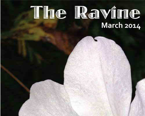 The Ravine Writing Contest 2014
